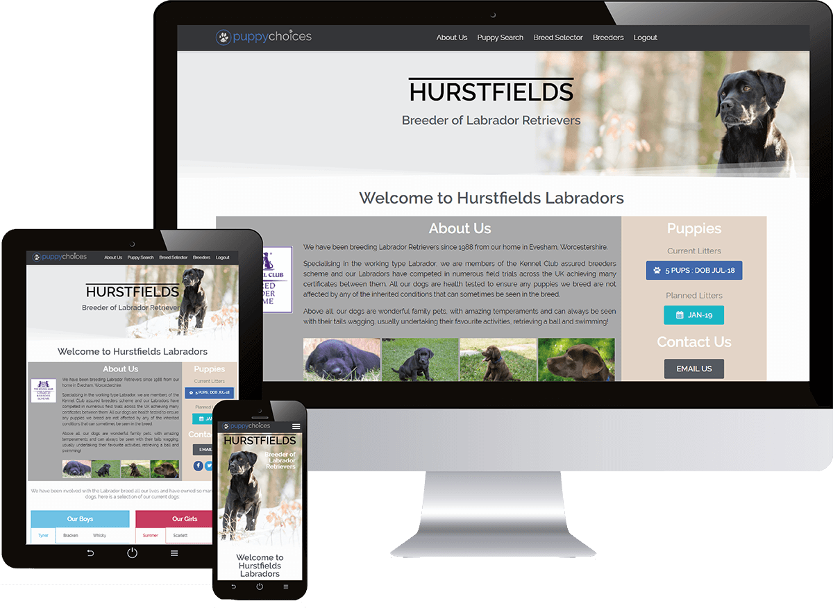 dog website showing on desktop, tablet and mobile phone