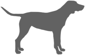 outline of gundog