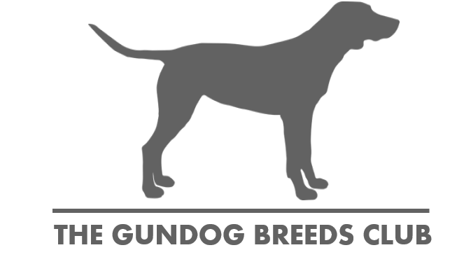 logo for the gundog breeds club dog outline